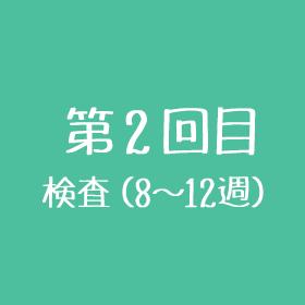 第2回目 検査(8~12週目)