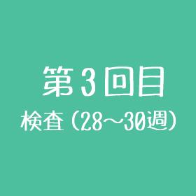 第3回目 検査(28~30週目)
